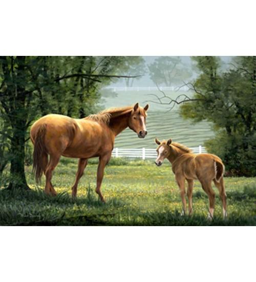 Hayvan Tabloları (3)
